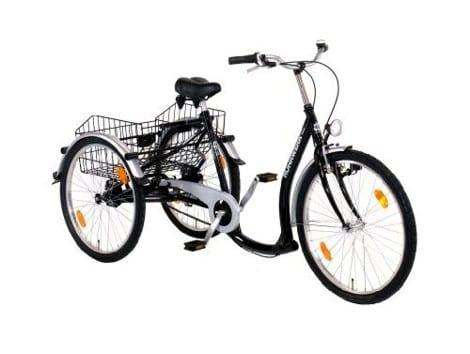 dreirad f r erwachsene senioren fahrrad fahren bis ins. Black Bedroom Furniture Sets. Home Design Ideas