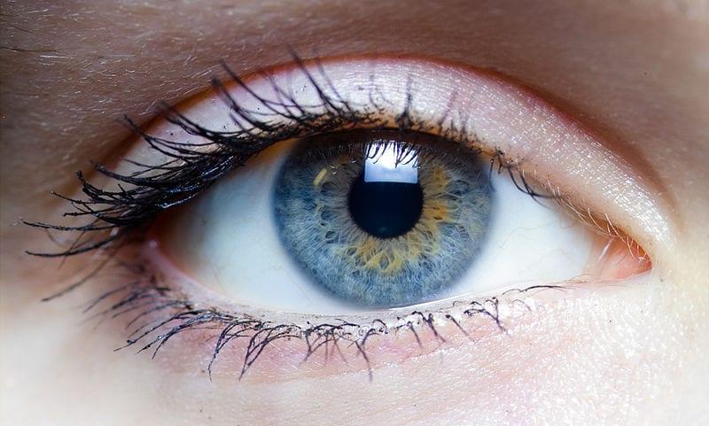 Auge, blaue Iris, Wimpern, Wimperntusche, eyes, blue eyes