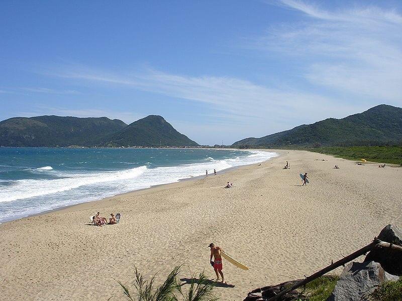 strand, beach, surfbrett, wellen, menschen, palmen steine, grün