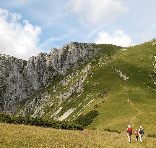 wandern, berg, wiese