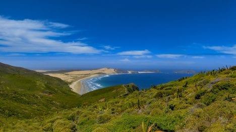 Neuseeland Kueste